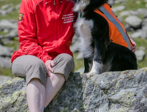 Search Dog Jake retires