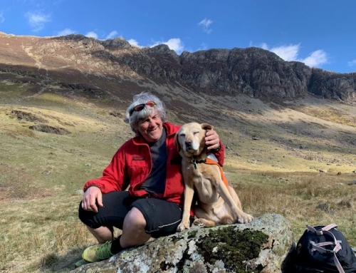 Search Dog Beck Retires